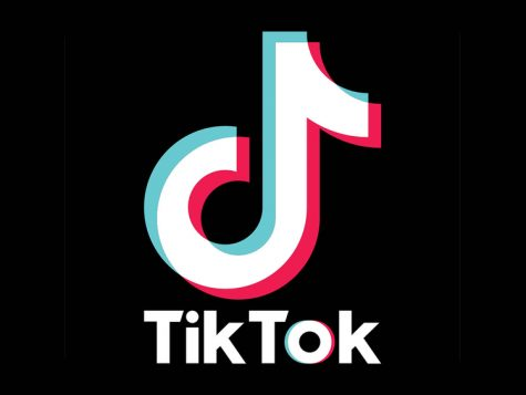 Tik Tok Takes Over: Why the new platform has swept Auk Nation