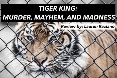 Tiger King: Murder, Mayhem, and Madness
