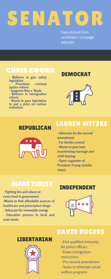 Local Candidates Infographic