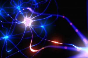 New Hope in the Fight Against Alzheimer's: Jagielska's Artificial Axons could Accelerate Drug Development